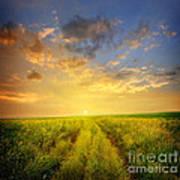Beautiful Sunsets Photos Art Print