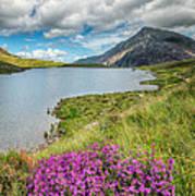 Beautiful Wales Art Print by Adrian Evans