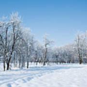 Beautiful Winter Landscape Art Print