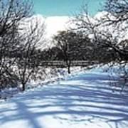 Beautiful Winter View Art Print