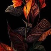 Beauty In The Dark Art Print