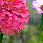 Beauty Showing Through The Rain Art Print