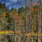 Beaver Pond Reflections Along The Highland Scenic Highway Art Print