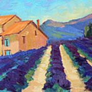 Bedoin - Provence Lavender Art Print