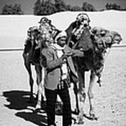 Bedouin Camel Minder Recieves Call On A Mobile Phone With Camels In The Sahara Desert At Douz Tunisia Art Print