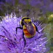 Bee Flower Art Print by Roger Snyder
