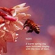 Bee Haiku Art Print