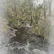 Beedelup Falls Art Print