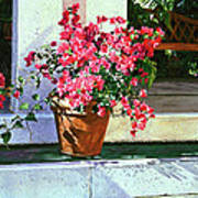 Bel-air Bougainvillea Pot Art Print by David Lloyd Glover