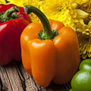 Bell Peppers And Poms Art Print by Garry Gay