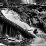 Below Anna Ruby Falls In Black And White Art Print