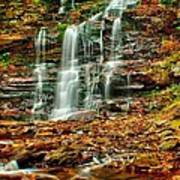 Below Ganoga Falls Art Print