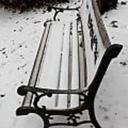 Bench In Snow Art Print