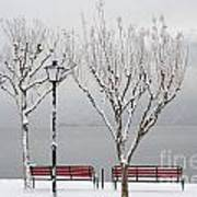 Bench On Lakefront In Winter Art Print