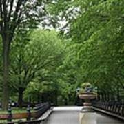 Bench Rows In Central Park  Nyc Art Print