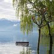 Bench With Trees On A Flooding Alpine Lake Art Print
