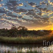 Bend In The Bayou Sunrise Art Print