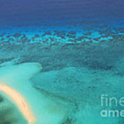 Beneath The Sea Great Barrier Reef Australia Art Print