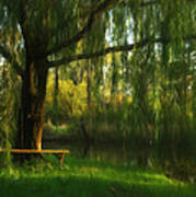 Beneath The Willow Art Print
