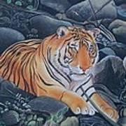 Bengal Tiger Wild Life Realistic Painting Water Color Handmade Artwork India Uk Art Print
