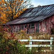 Berkshire Autumn - Old Barn Series   Art Print