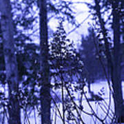 Berkshires Winter 8 - Massachusetts Art Print
