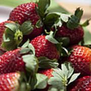 Berries In The Kitchen Art Print