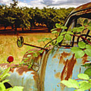 Berry Old Truck 2 Art Print