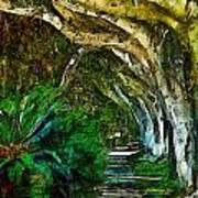 Beverly Hills Jungle Art Print by Cary Shapiro