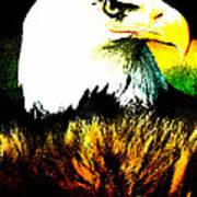 Beyond Eagle View Art Print
