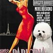 Bichon Frise Art - Una Parigina Movie Poster Art Print