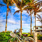 Bicycles Under The Palms Art Print