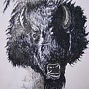Big Bad Buffalo Art Print
