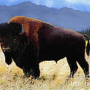Big Bison Art Print
