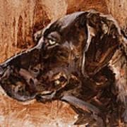 Big Brown Dog Art Print