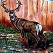Big Buck Art Print
