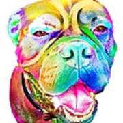 Big Dog Art Print
