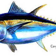 Big Eye Tuna Art Print