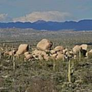 Big Granite Boulder In The Desert Art Print