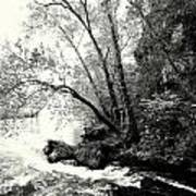 Big Spring In B And W Art Print