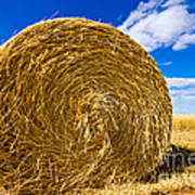 Big Straw Bales Art Print
