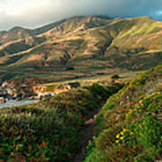 Big Sur Trail At Soberanes Point Art Print