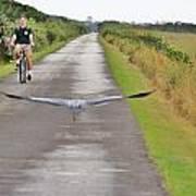 Biker And The Bird Art Print