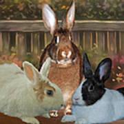 Bindy Bella And Butterscotch Art Print
