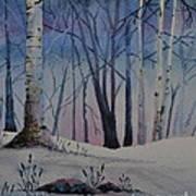 Birch Dawn Art Print