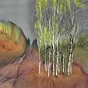 Birch Grove 1 Art Print by Carolyn Doe