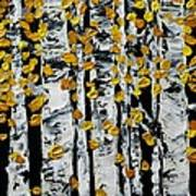 Birch Study Fall Art Print