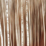 Birches In Motion Art Print