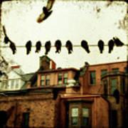 Bird Cityscape Art Print