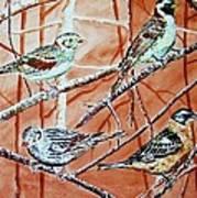 Bird Foursome Art Print by Linda Vaughon